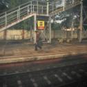 Train Inde 19